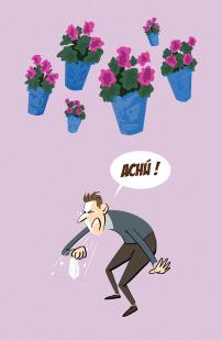 alergia en las Cruces de Mayo